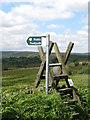 SK2594 : Stile on Penistone Road by Dave Pickersgill