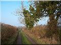 SU6885 : Bridleway Near Howberrywood by Des Blenkinsopp