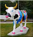 J5082 : 'CowParade' cow, Bangor : Week 29