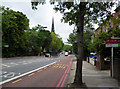 TQ3473 : Dulwich:  Lordship Lane by Dr Neil Clifton