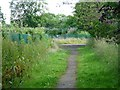 SE3438 : Well-used path on disused track by Christine Johnstone