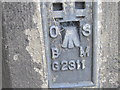 SK2168 : Ordnance Survey  Flush Bracket G2311 by Peter Wood