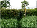 SK6916 : Gate along the Leicestershire Round Footpath by Mat Fascione
