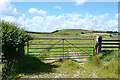 SN9979 : Gate and field near Garth Fawr farm by Nigel Brown