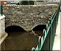 C8532 : The Lodge Burn, Coleraine (9) by Albert Bridge
