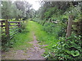 TL8740 : Footpath by the River Stour, Sudbury by Helen Steed