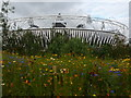 TQ3784 : Wild flowers and the Olympic Stadium by Graham Hogg