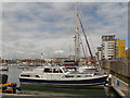 TQ6401 : Sovereign Harbour Marina by David Dixon