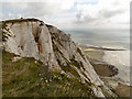 TV5895 : Cliffs at Beachy Head by David Dixon