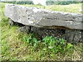 SK2057 : Dolmen 1 close up by Rob Howl