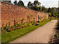 SJ9921 : The Kitchen Garden at Shugborough by David Dixon