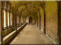 ST9168 : Cloister Walk, Lacock Abbey by David Dixon