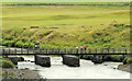 C9342 : The Three Quarter Bridge, Portballintrae (1) by Albert Bridge