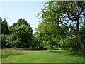 SK9224 : Trees in garden of Woolsthorpe Manor by DS Pugh