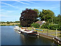 TQ0566 : Chertsey Marina by Alan Hunt