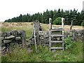 SE0025 : Ladder stile on Hebden Royd Footpath 71 by Humphrey Bolton