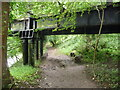 SO5817 : Remnant of a railway bridge near Welsh Bicknor by Jeremy Bolwell