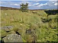 SK2683 : Stream flowing beneath Upper Burbage Bridge by Chris Morgan