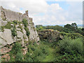 SJ5359 : Beeston castle: the ditch by Stephen Craven