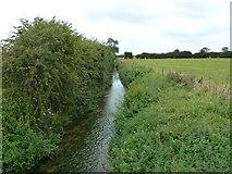 SP9521 : Ouzel Brook by Mr Biz