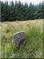 NY4383 : The Dixon Stone in Tinnisburn Forest by Walter Baxter