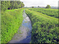 SK9566 : Drainage ditch at North Hykeham by Trevor Rickard