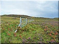 NG3760 : Fence line across Cnoc Fadail by John Allan