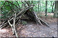 SP9335 : Makeshift shelter in the woods by Philip Jeffrey