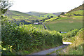 SH8906 : Lane to D&ocirc;l Fawr farm by Nigel Brown