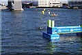 TQ4080 : The finish, British Gas Great Swim by N Chadwick