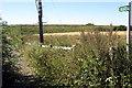 SP9637 : Path to Husbourne Crawley by Philip Jeffrey