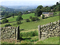 SK2380 : Hathersage - gate posts and fields below Broadwood by Dave Bevis