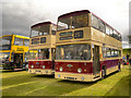 SD8203 : Leyland Atlanteans by David Dixon