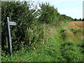 TL7942 : Footpath Sign by Keith Evans