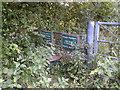 ST5658 : Stile on Moreton Lane by James Ayres