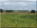 TL1464 : Crop field by JThomas