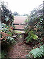 SP8130 : Stile on the footpath to Mursley by Philip Jeffrey