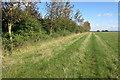 SP8228 : Bridleway to Salden by Philip Jeffrey