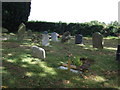 TL0363 : Graveyard, All Saints Church, Riseley by JThomas
