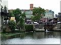 TQ2884 : Regent's Canal : Week 37