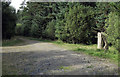 NY9654 : Road junction in Slaley Forest by Trevor Littlewood