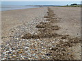 TF6536 : A recent high tide line - South Beach Heacham by Richard Humphrey