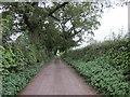 SJ4954 : Padge Lane near Fuller's Moor by Jeff Buck