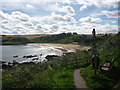 NT9166 : Coastal Berwickshire : The Path To Coldingham Bay by Richard West