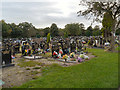 SJ8392 : Manchester Southern Cemetery by David Dixon