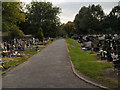 SJ8392 : Southern Cemetery by David Dixon