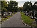 SJ8392 : Southern Cemetery by David Dixon