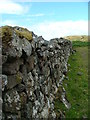 NG3955 : Old wall at Kingsburgh by Dave Fergusson