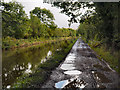 SJ9584 : Macclesfield Canal, Higher Poynton by David Dixon