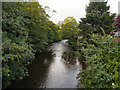 SJ9689 : River Goyt, Marple Bridge by David Dixon
